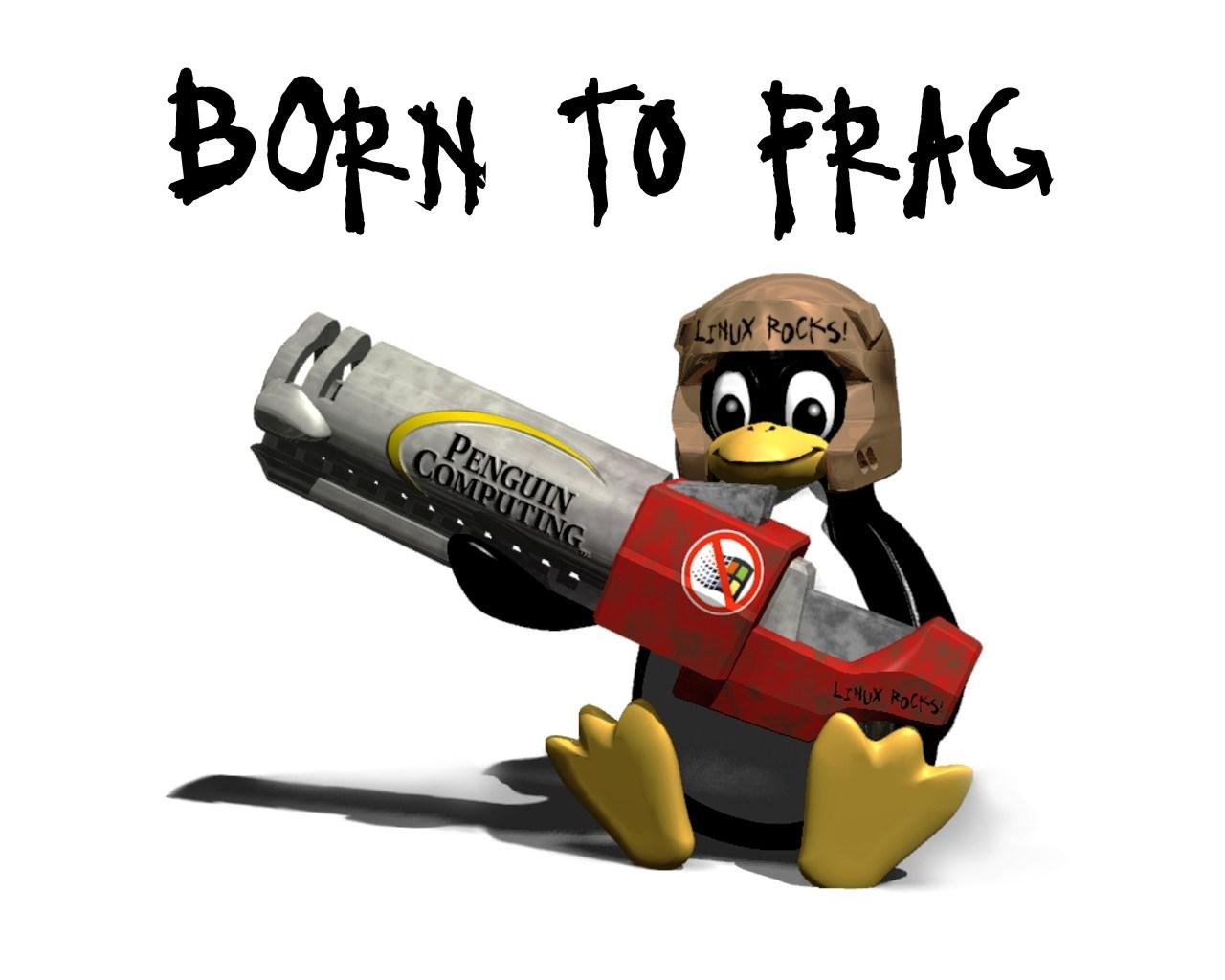 [Image: linux-tux-born-2-frag.jpg]